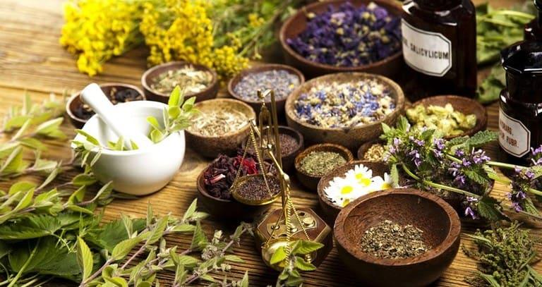 Kinh nghiệm dân gian có nhiều bài thuốc kiểm soát ngứa ngáy toàn thân từ các thảo dược thiên nhiên.