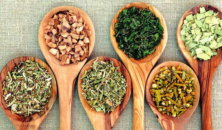 Bài thuốc Đông y trị viêm da hiệu quả