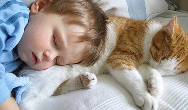 Phòng ngừa bệnh hắc là cho trẻ bằng cách hạn chế cho trẻ tiếp xúc với các vật nuôi