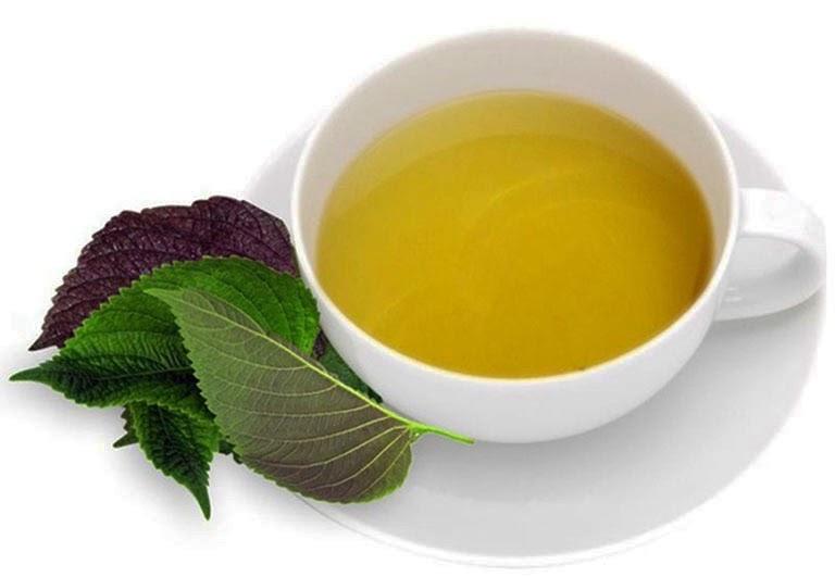 Lá tía tô không chỉ dùng trị chữa cảm cúm, mà trị cơn đau thắt dạ dày rất hiệu quả