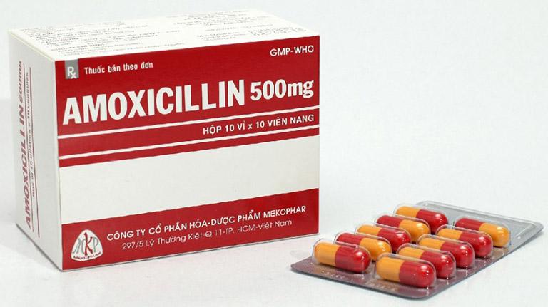 Amoxicillin là kháng sinh điều trị vi khuẩn Helicobacter pylori hiệu quả