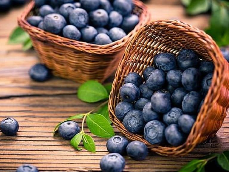 Việt quất là loại quả cung cấp rất nhiều chất xơ và vitamin C cho cơ thể