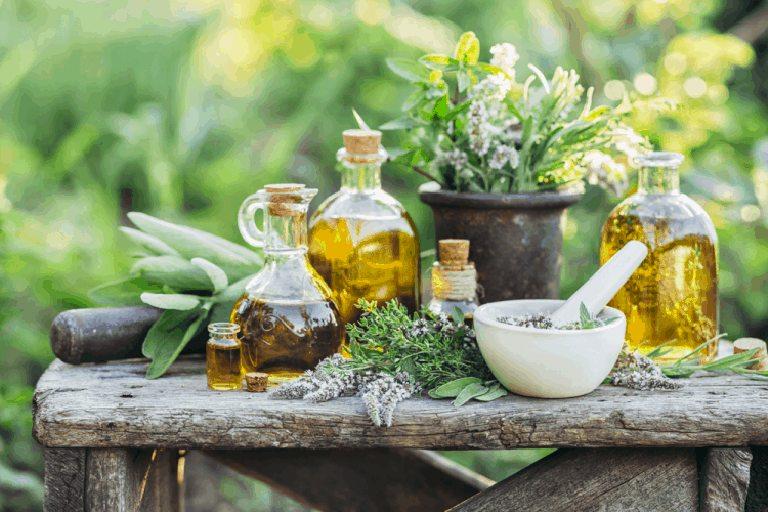 Tận dụng các loại thảo dược có sẵn trong tự nhiên để trị bệnh viêm xoang cấp tính có độ an toàn cao