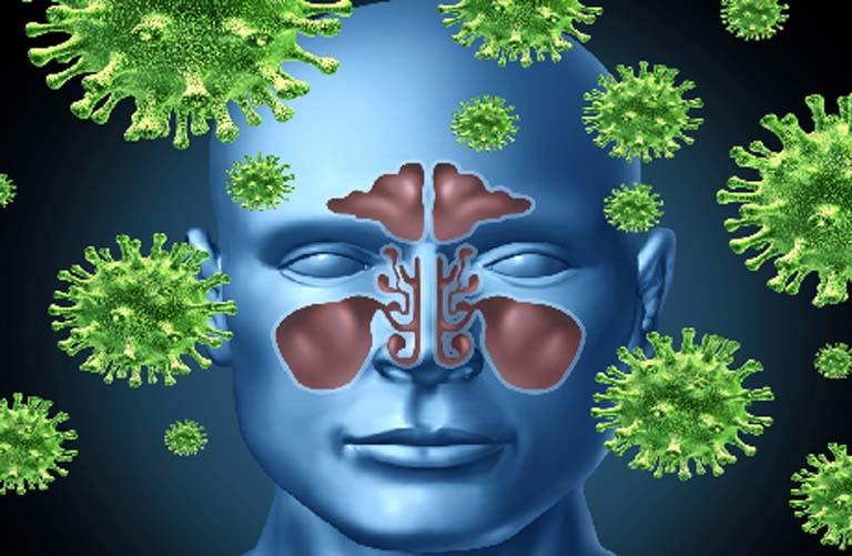 Virus và vi khuẩn có hại là tác nhân gây ra bệnh viêm xoang, sau khi xâm nhập vào lớp niêm mạc xoang chúng sẽ kích thích phản ứng viêm xảy ra