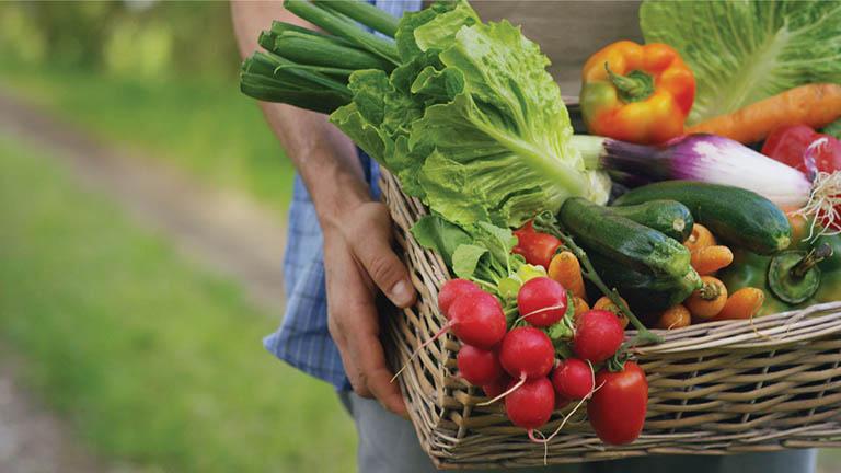 Tăng cường ăn rau xanh vầ trái cây tươi trong suốt khoảng thời gian điều trị bệnh viêm xoang