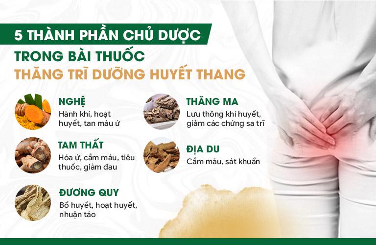 5 thành phần chủ dược của bài thuốc Thăng trĩ Dưỡng huyết thang