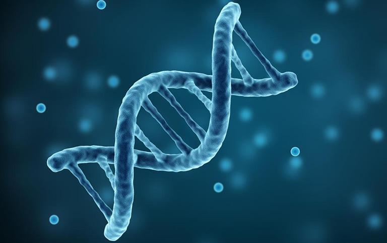 Bệnh trĩ hoàn toàn không có tính di truyền vì căn bệnh này không được truyền lại qua gen