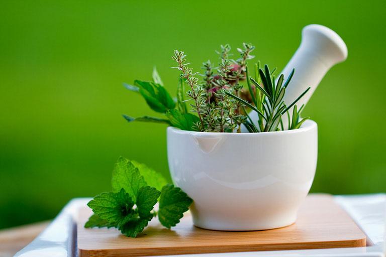 Chữa sa búi trị tại nhà bằng các loại thảo dược lành tính có sẵn trong tự nhiên