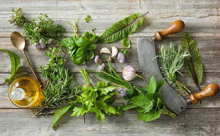 Sử dụng các loại thảo dược lành tính trong tự nhiên để trị bệnh phồng đĩa đệm tại nhà