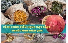 cách chữa viêm họng hạt bằng thuốc Nam