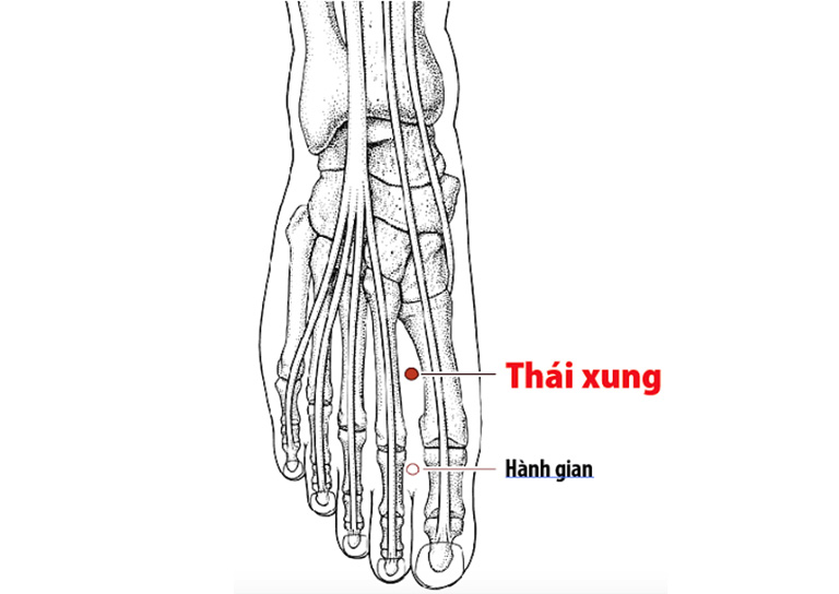 Huyệt Thái xung có tác dụng tức can dương, lý huyết, bình can, sơ tiết thấp nhiệt và cải thiện triệu chứng của đau dạ dày