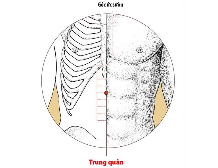 Huyệt Trung quản có tác dụng hóa thấp trệ, lý trung tiêu và hỗ trợ làm giảm các triệu chứng do bệnh đau đầy gây ra