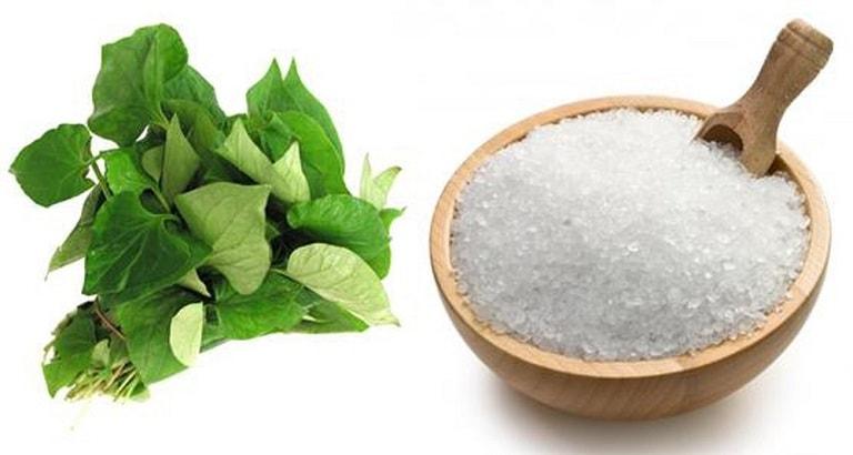cách chữa viêm amidan bằng rau diếp cá và muối