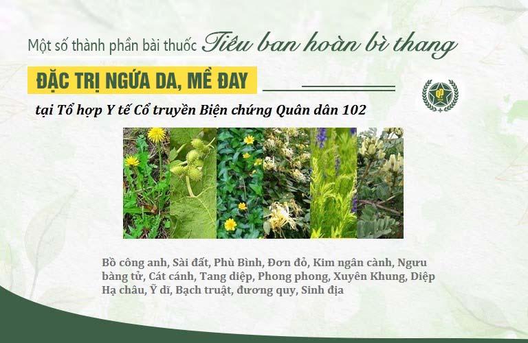 Các thành phần thảo dược tự nhiên an toàn, lành tính trong bài thuốc Tiêu ban hoàn bì thang Quân dân 102