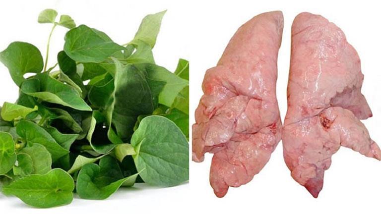Nấu canh phổi lợn diếp cá ăn mỗi ngày cũng là cách trị ho có đờm khá tốt