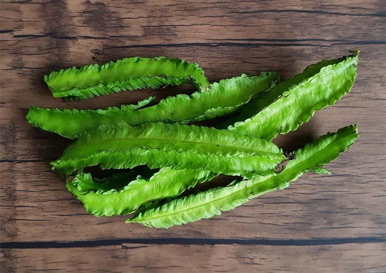 Hàm lượng chất xơ có trong quả đậu rồng rất tốt cho việc nhuận tràng, ngăn ngừa táo bón, kích thích hoạt động của hệ tiêu hóa và hỗ trợ trị chứng đau dạ dày