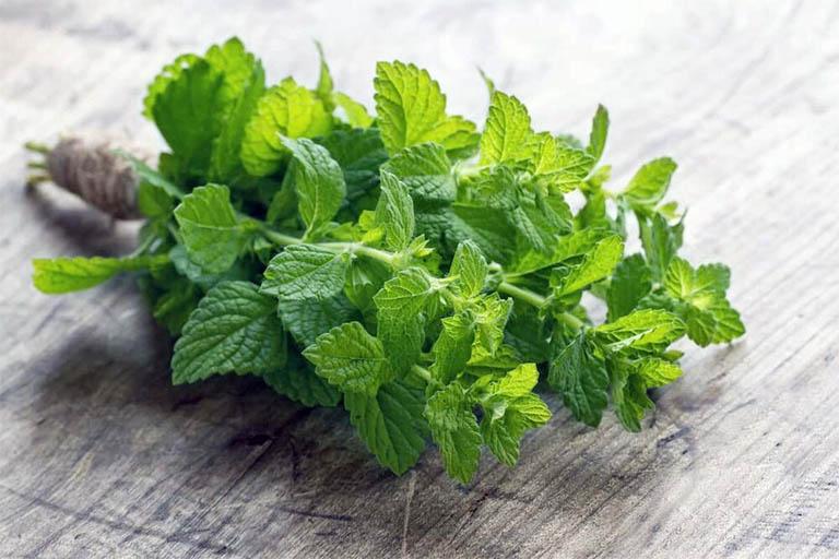 Với vị cay the và mùi thơm dễ chịu, lá bạc hà có tác dụng lấn át mùi hôi khó chịu trong khoang miệng