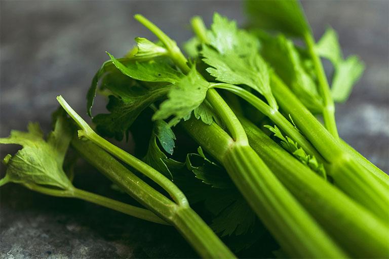 Cây cần tây vừa có công dụng làm thực phẩm vừa được tận dụng làm thuốc chữa bệnh thấp khớp