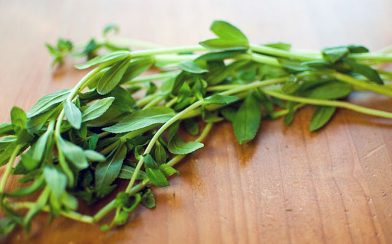 Dùng rau ngổ có nguồn gốc rõ ràng và không nhiễm hóa chất để trị bệnh sỏi mật tại nhà
