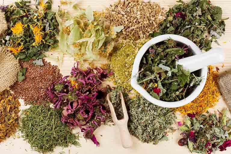 Bài thuốc Đông y chữa tràn dịch khớp gối là sự kết hợp của nhiều vị thuốc thiên nhiên khác nhau