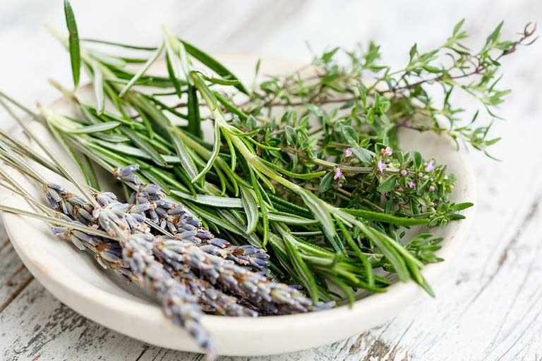 Bài thuốc Nam chữa tràn dịch khớp gối là các loại thảo dược lành tính có sẵn trong tự nhiên