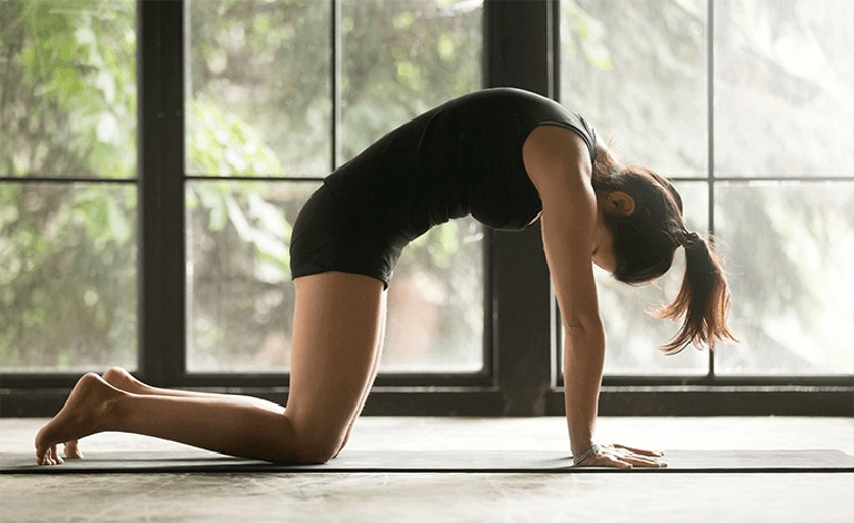 Chữa thoái hóa cột sống tại nhà bằng bài tập yoga tư thế con mèo