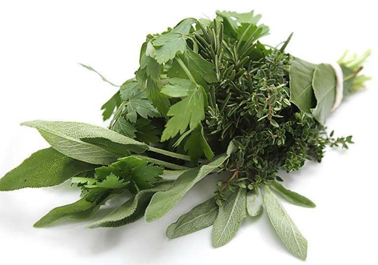 Chữa đau lưng tại nhà bằng các loại thảo dược lành tính có sẵn trong tự nhiên